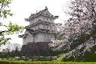忍城 郷土博物館